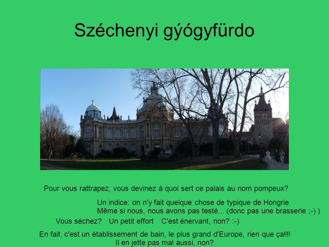 Széchenyi gýógyfürdo Pour vous rattrapez, vous devinez à quoi sert ce palais au nom pompeux? Un indice: on n'y fait quelque chose de typique de Hongri