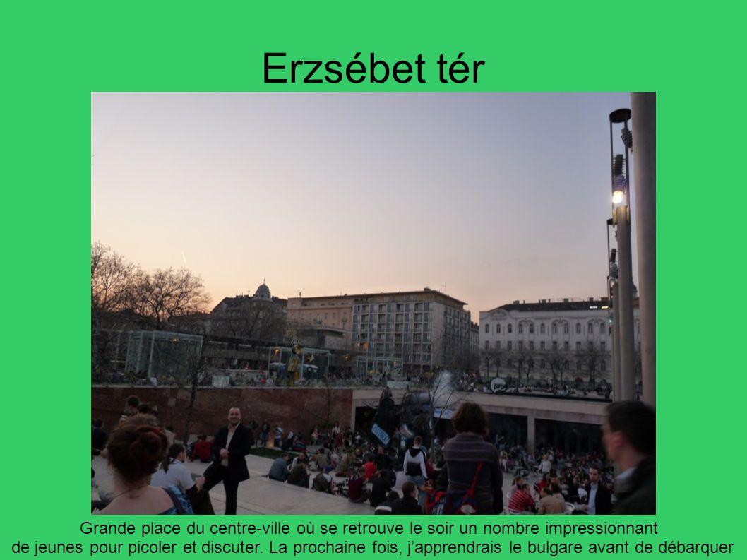 Erzsébet tér Grande place du centre-ville où se retrouve le soir un nombre impressionnant de jeunes pour picoler et discuter. La prochaine fois, jappr