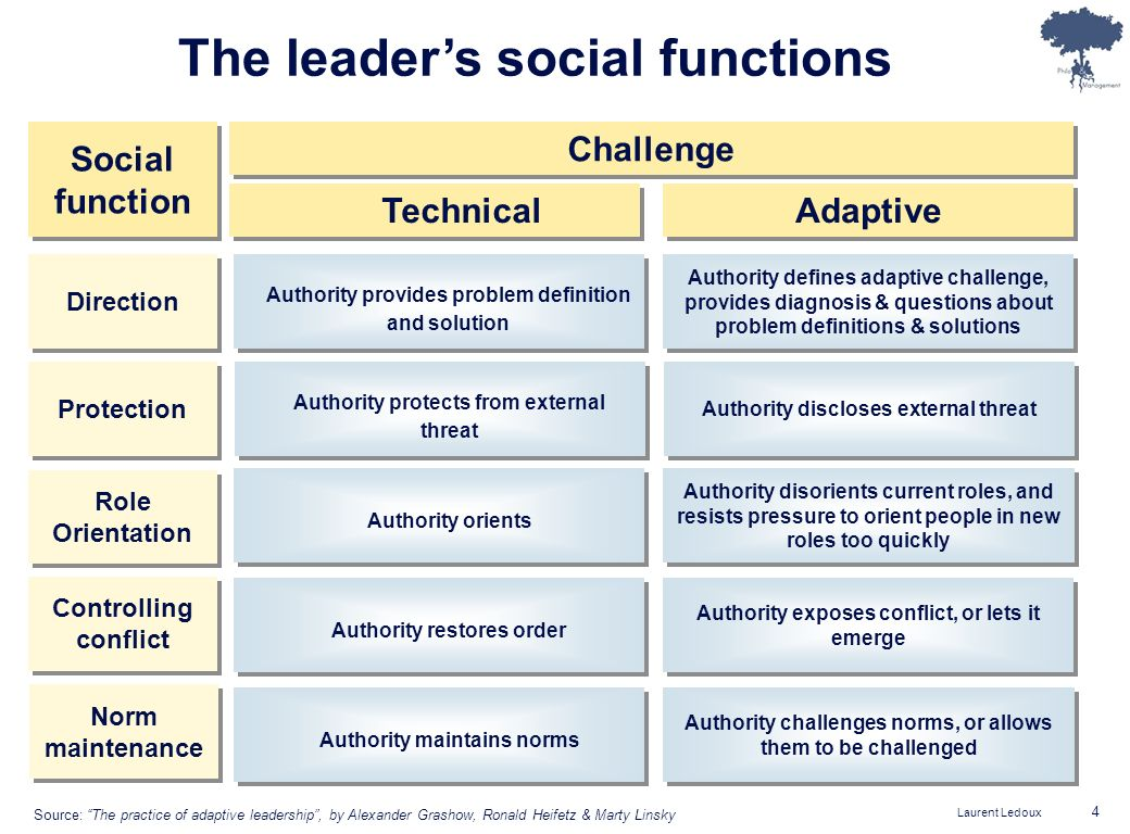 Laurent Ledoux 4 The leaders social functions Social function Direction Protection Role Orientation Controlling conflict Norm maintenance Challenge Technical Authority provides problem definition and solution Authority defines adaptive challenge, provides diagnosis & questions about problem definitions & solutions Adaptive Authority protects from external threat Authority discloses external threat Authority orients Authority disorients current roles, and resists pressure to orient people in new roles too quickly Authority restores order Authority exposes conflict, or lets it emerge Authority maintains norms Authority challenges norms, or allows them to be challenged Source: The practice of adaptive leadership, by Alexander Grashow, Ronald Heifetz & Marty Linsky