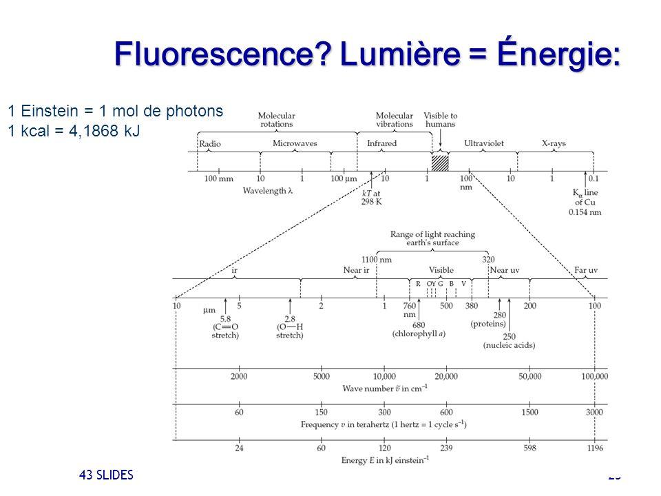 43 SLIDES 23 1 Einstein = 1 mol de photons 1 kcal = 4,1868 kJ Fluorescence? Lumière = Énergie: