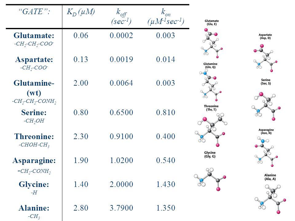 43 SLIDES 28 GATE:K D (µM)k off (sec -1 ) k on (µM -1 sec -1 ) Glutamate: -CH 2 -CH 2 -COO - 0.060.00020.003 Aspartate: -CH 2 -COO - 0.130.00190.014 G