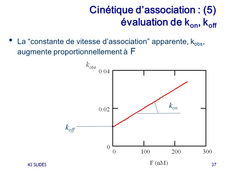 43 SLIDES 37 Cinétique dassociation : (5) évaluation de k on, k off La constante de vitesse dassociation apparente, k obs, augmente proportionnellemen