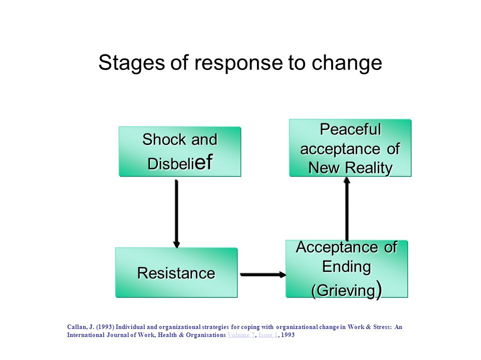 How do we experience change? Energising Fear Resistance Transformation Threat Improvement Resignation Excitement Chaos Exhausting Unnecessary Sceptica