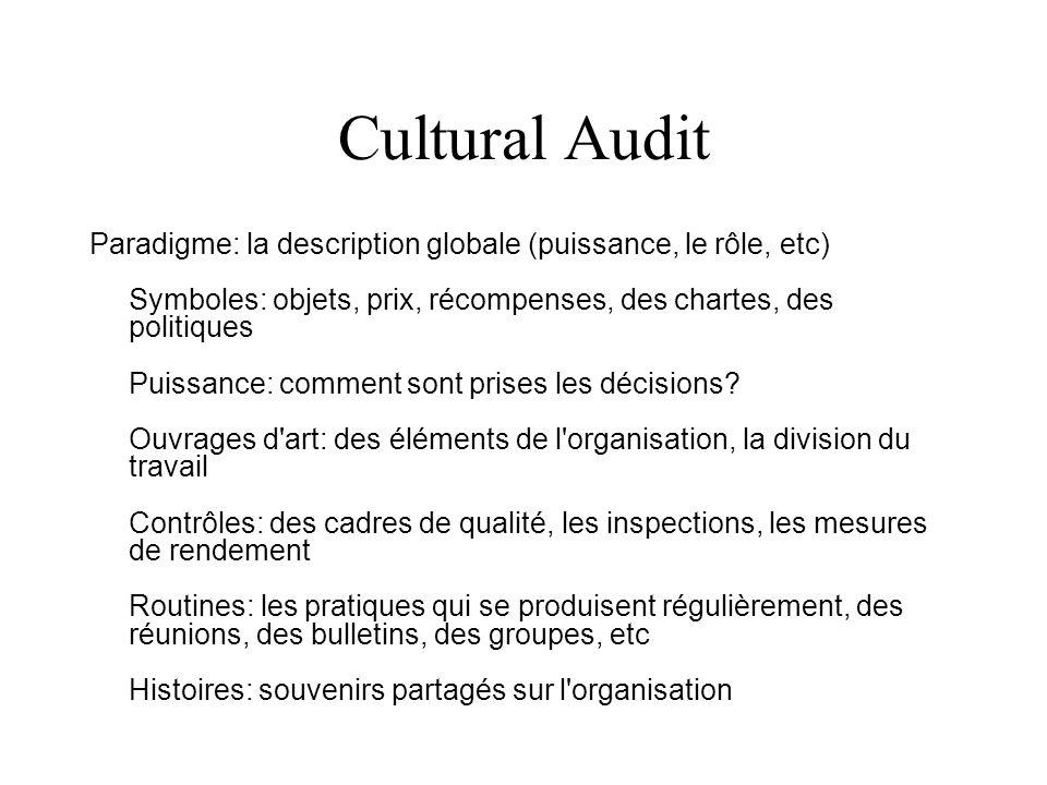 Cultural audit Assignment Description Introduction (general description, aims, people, location) Paradigm: overall description (power, role etc) Symbo