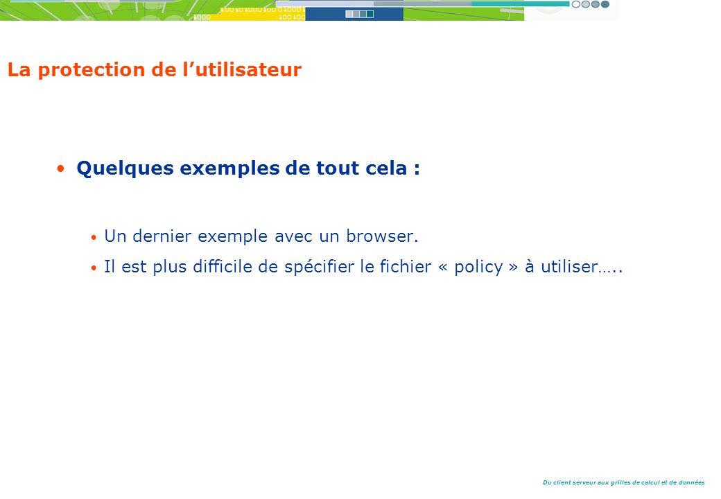 Du client serveur aux grilles de calcul et de données La protection de lutilisateur Quelques exemples de tout cela : Un dernier exemple avec un browser.