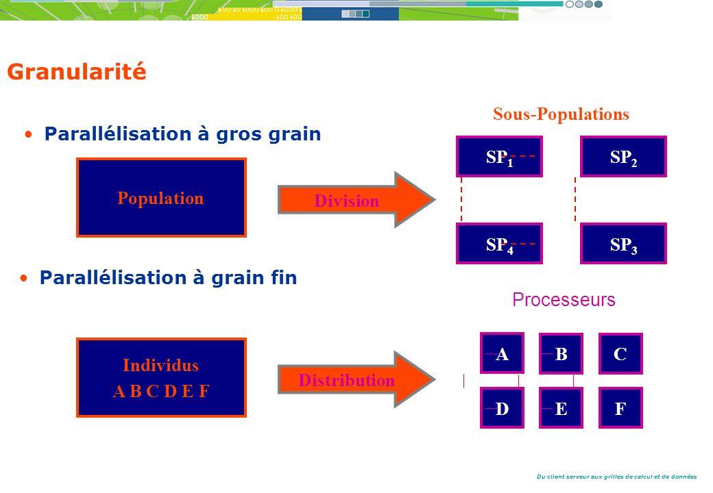 Du client serveur aux grilles de calcul et de données Granularité Parallélisation à gros grain Parallélisation à grain fin Population SP 1 Division SP 2 SP 4 SP 3 Sous-Populations Individus A B C D E F Distribution A BC DEF Processeurs