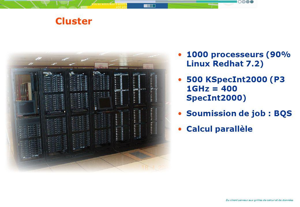 Du client serveur aux grilles de calcul et de données Cluster 1000 processeurs (90% Linux Redhat 7.2) 500 KSpecInt2000 (P3 1GHz = 400 SpecInt2000) Soumission de job : BQS Calcul parallèle