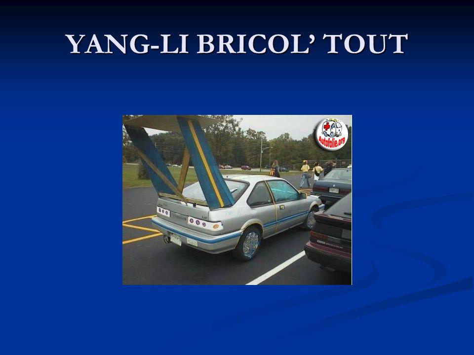 YANG-LI BRICOL TOUT