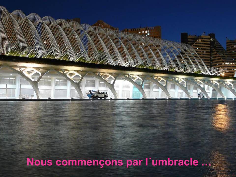 Cest la ville des Arts et des sciences à Valence, Ma ville adoptive, ceci est mon petit hommage.