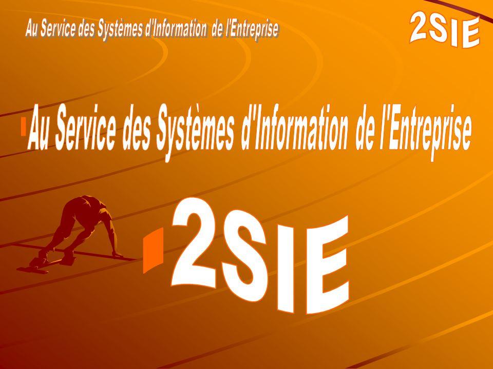 2007 - Limoges 2SIE - Société du Groupe S E 2 Qui sommes nous .