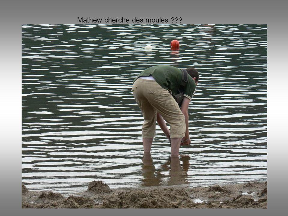 Mathew cherche des moules