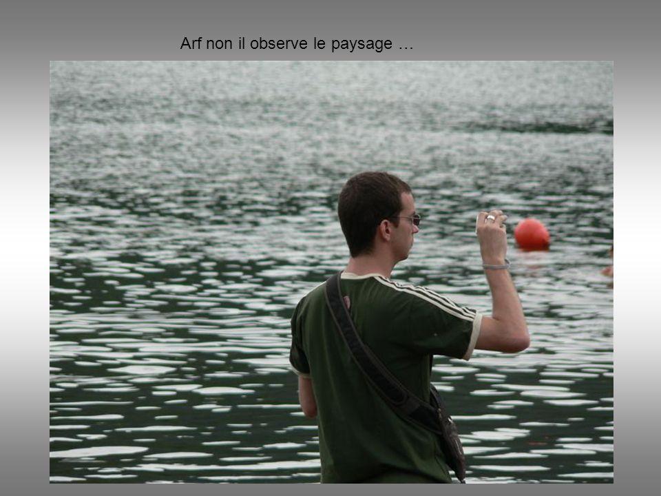 Arf non il observe le paysage …