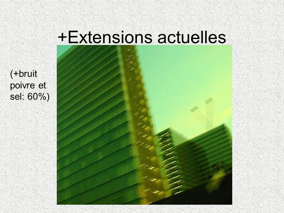 +Extensions actuelles (+bruit poivre et sel: 60%)