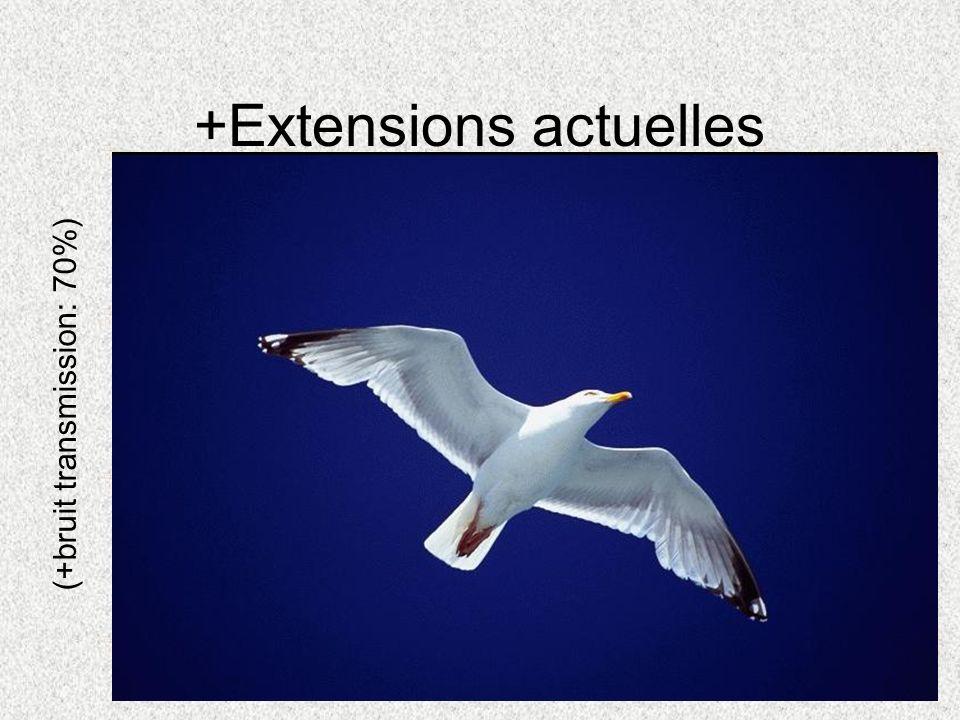 +Extensions actuelles (+bruit transmission: 70%)