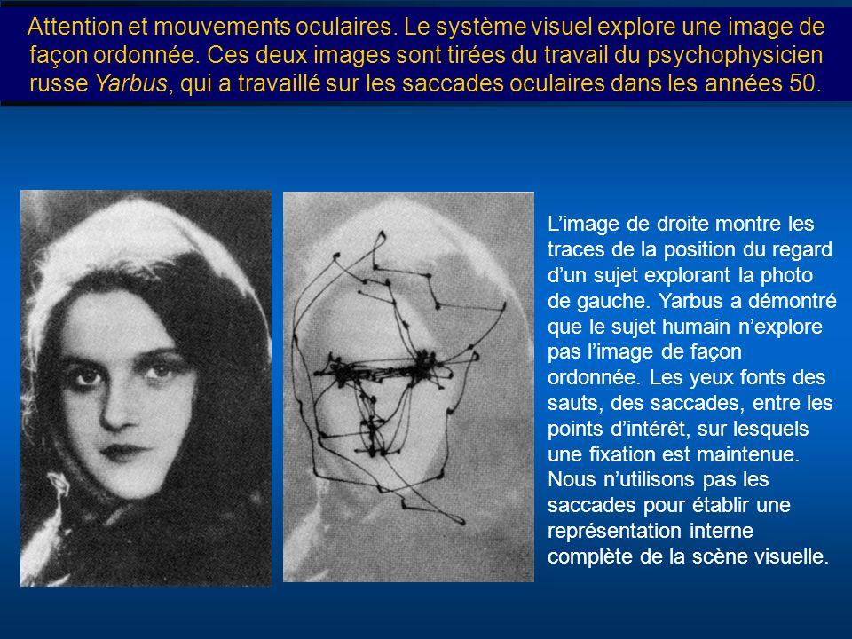 Attention et mouvements oculaires. Le système visuel explore une image de façon ordonnée. Ces deux images sont tirées du travail du psychophysicien ru