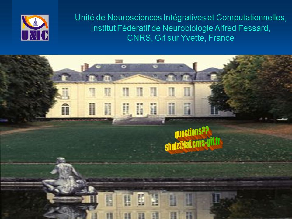 Unité de Neurosciences Intégratives et Computationnelles, Institut Fédératif de Neurobiologie Alfred Fessard, CNRS, Gif sur Yvette, France
