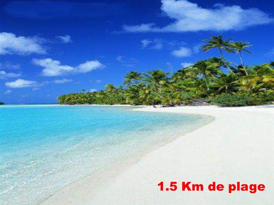 1.5 Km de plage