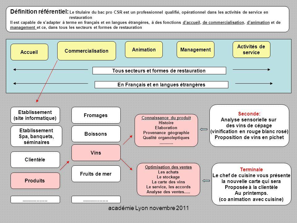 académie Lyon novembre 2011 Définition référentiel: Le titulaire du bac pro CSR est un professionnel qualifié, opérationnel dans les activités de serv