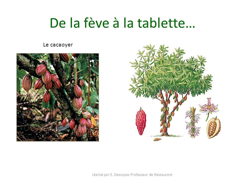 De la fève à la tablette… réalisé par E. Desvoyes Professeur de Restaurant Le cacaoyer