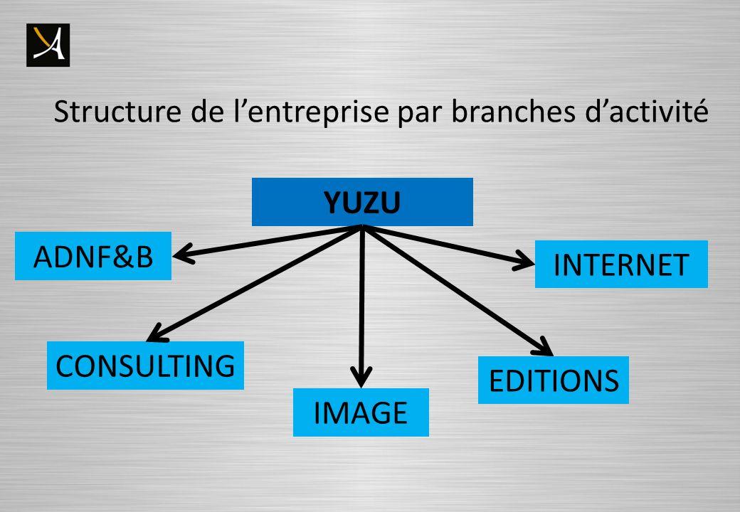 Structure de lentreprise par branches dactivité YUZU CONSULTING ADNF&B IMAGE INTERNET EDITIONS