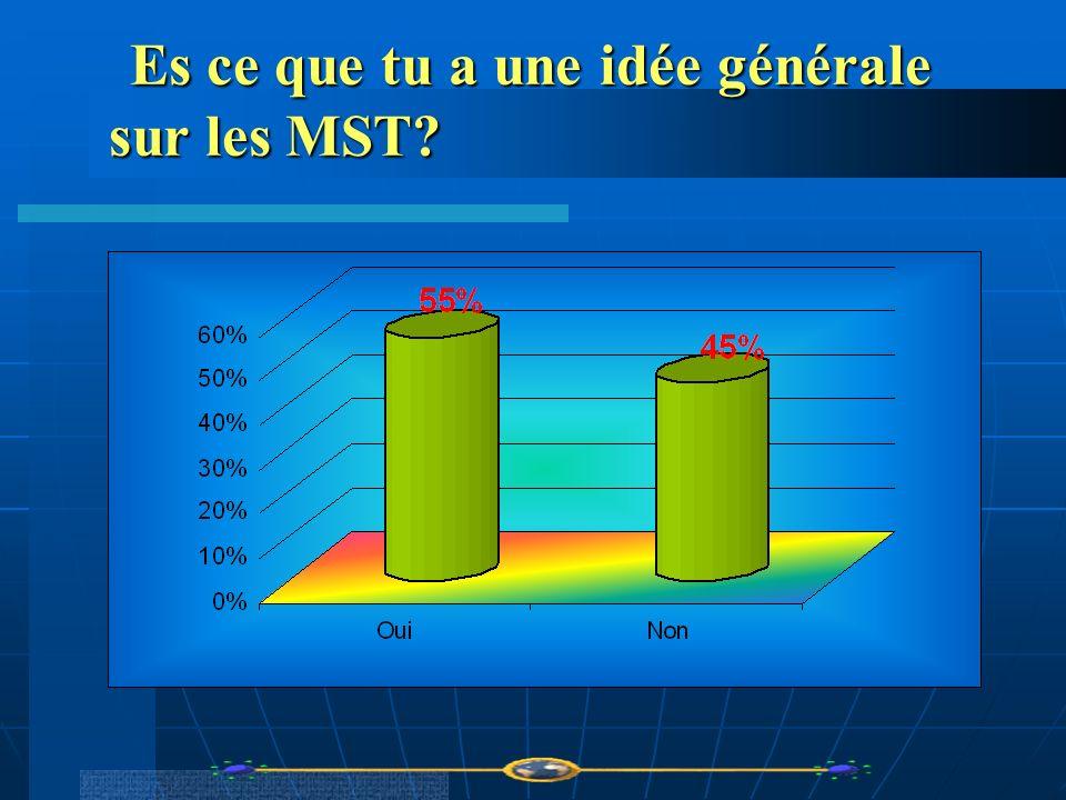 Es ce que tu a une idée générale sur les MST? Es ce que tu a une idée générale sur les MST?