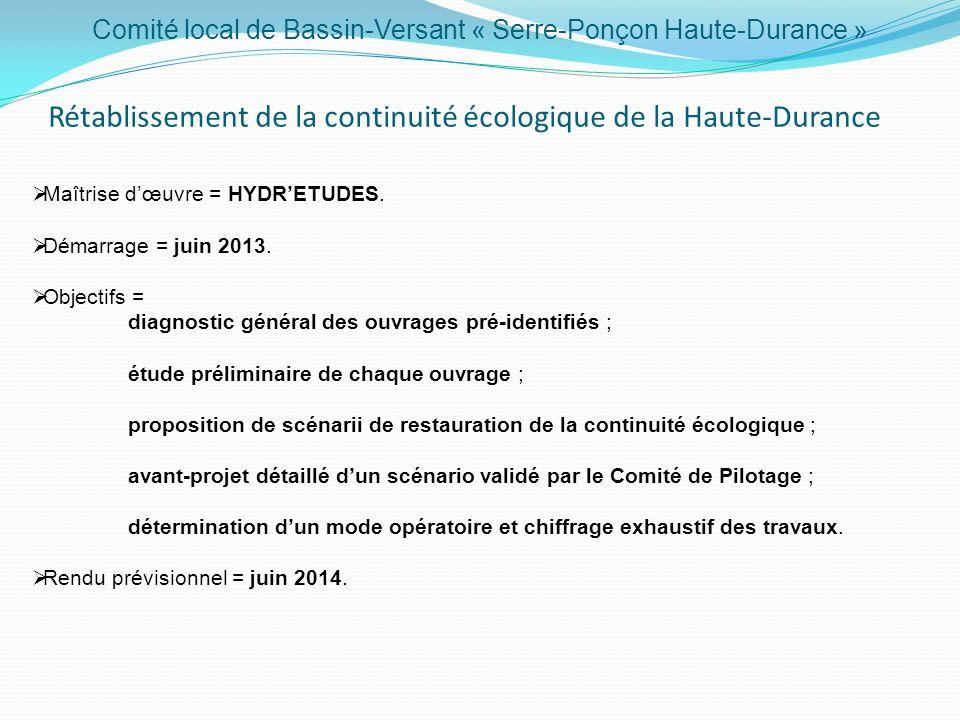 Comité local de Bassin-Versant « Serre-Ponçon Haute-Durance » Diagnostic de la Ressource en Eau du bassin-versant Maitrise dœuvre = CEREG INGENIERIE, LISODE, TETHYS HYDRO et B.LAMBAY.