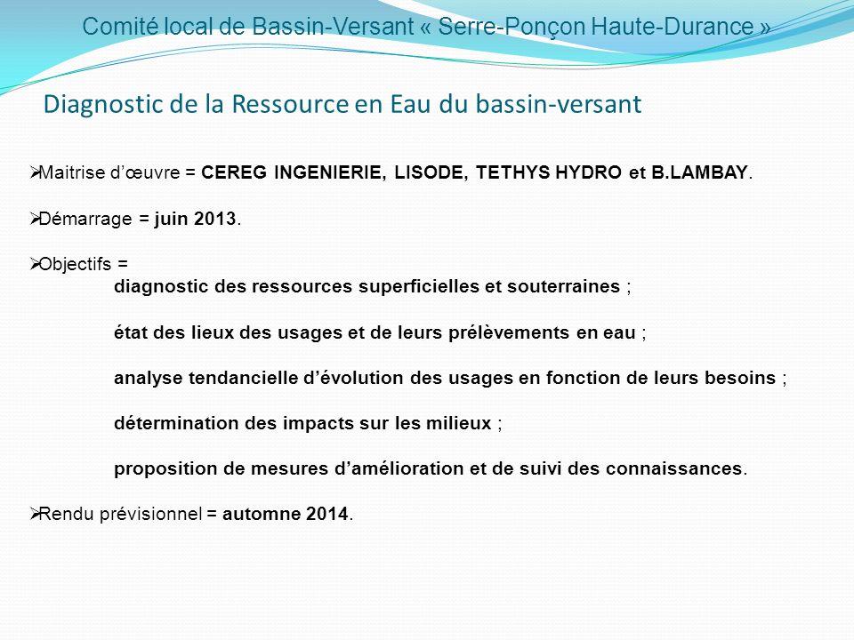 Comité local de Bassin-Versant « Serre-Ponçon Haute-Durance » Diagnostic de la Ressource en Eau du bassin-versant Maitrise dœuvre = CEREG INGENIERIE,