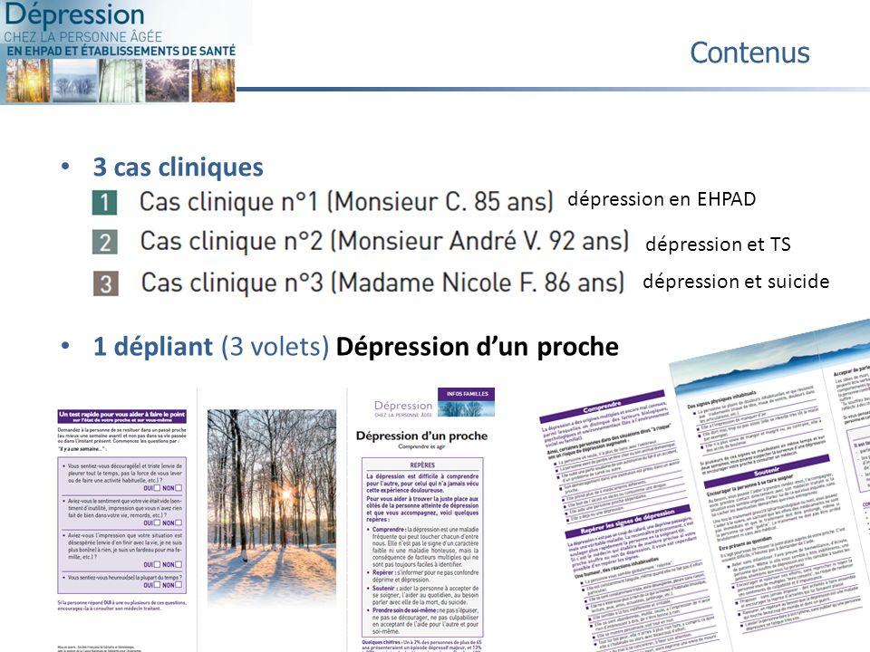 3 cas cliniques Contenus dépression en EHPAD dépression et TS dépression et suicide 13 1 dépliant (3 volets) Dépression dun proche
