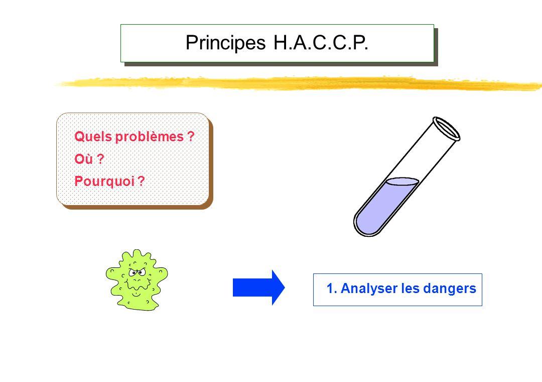 Produit Procédé Environnement Analyse des dangers Danger microbiologique/biologique Danger chimique Danger physique CausesMesures préventivesDanger Po