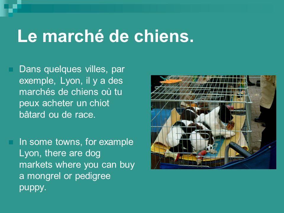 Le marché de chiens.