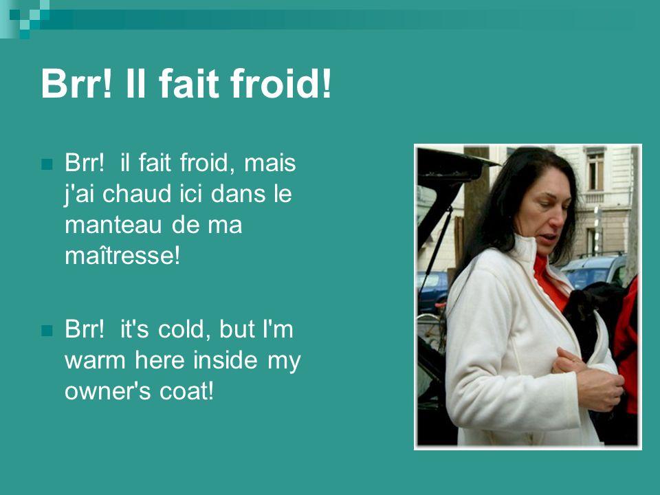 Brr. Il fait froid. Brr. il fait froid, mais j ai chaud ici dans le manteau de ma maîtresse.