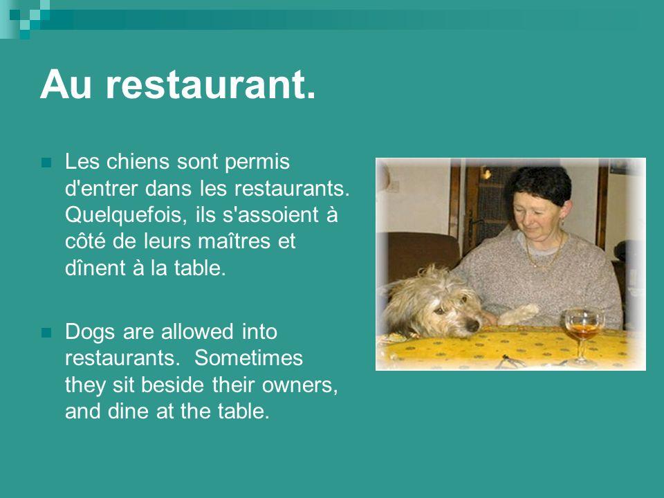 Au restaurant. Les chiens sont permis d entrer dans les restaurants.