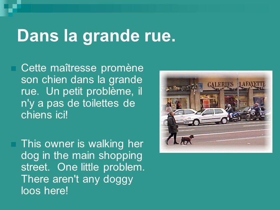 Dans la grande rue. Cette maîtresse promène son chien dans la grande rue.