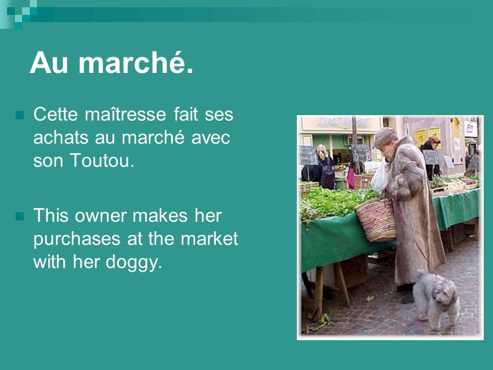 Au marché. Cette maîtresse fait ses achats au marché avec son Toutou.