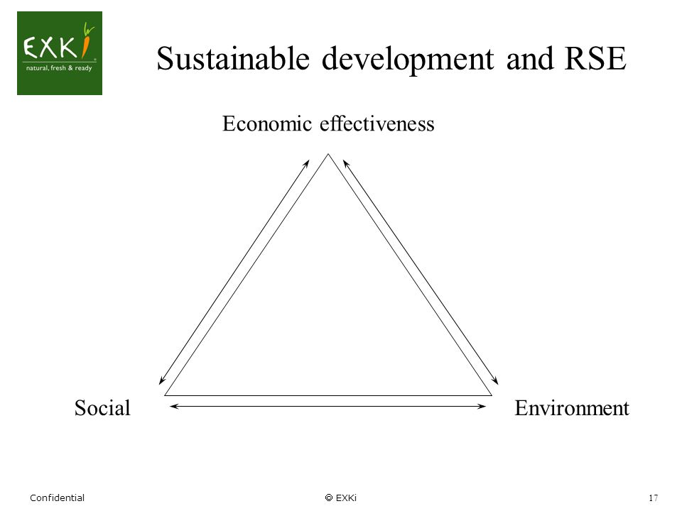 Confidential EXKi 17 Sustainable development and RSE Economic effectiveness EnvironmentSocial