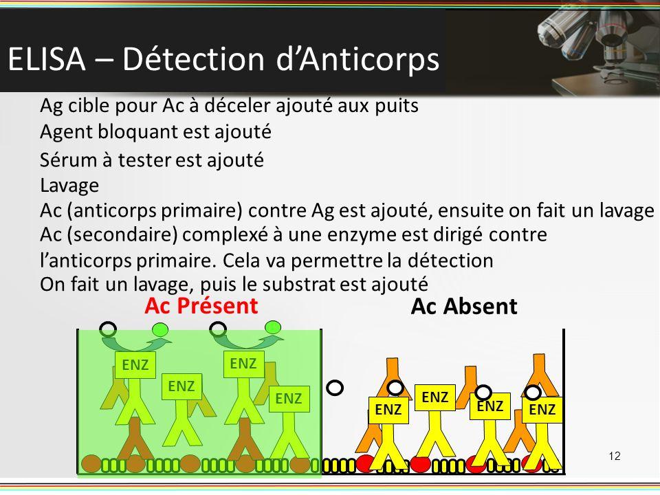 ELISA – Détection dAnticorps 12 ENZ Ac Présent Ac Absent Ag cible pour Ac à déceler ajouté aux puits Agent bloquant est ajouté Sérum à tester est ajou