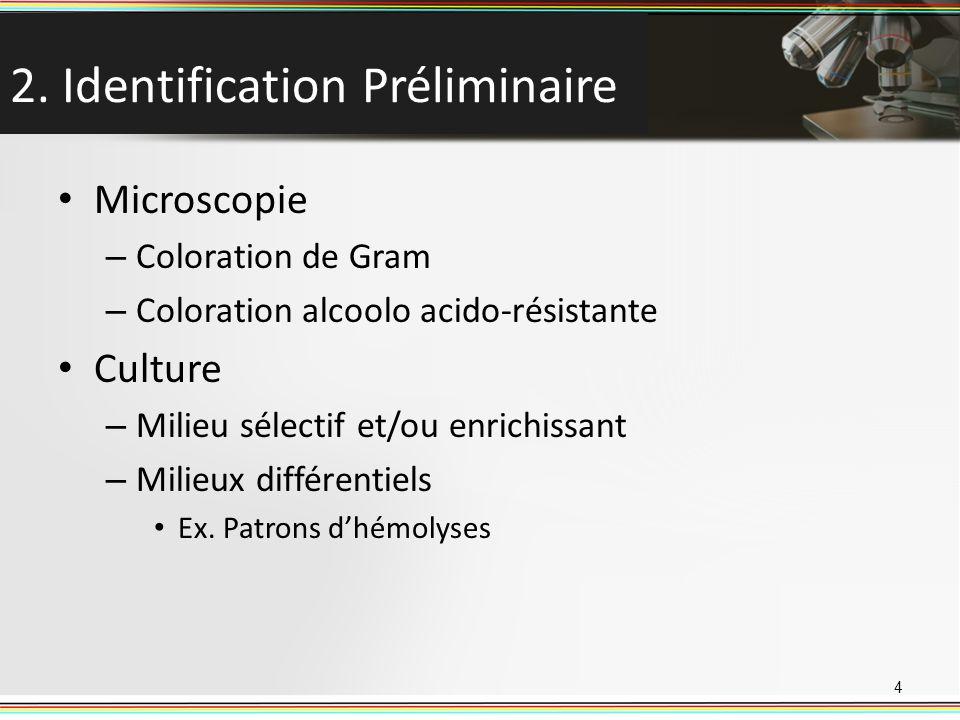 2. Identification Préliminaire Microscopie – Coloration de Gram – Coloration alcoolo acido-résistante Culture – Milieu sélectif et/ou enrichissant – M