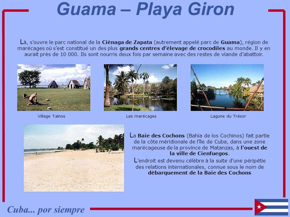 L à, souvre le parc national de la Ciénaga de Zapata (autrement appelé parc de Guama), région de marécages où sest constitué un des plus grands centre
