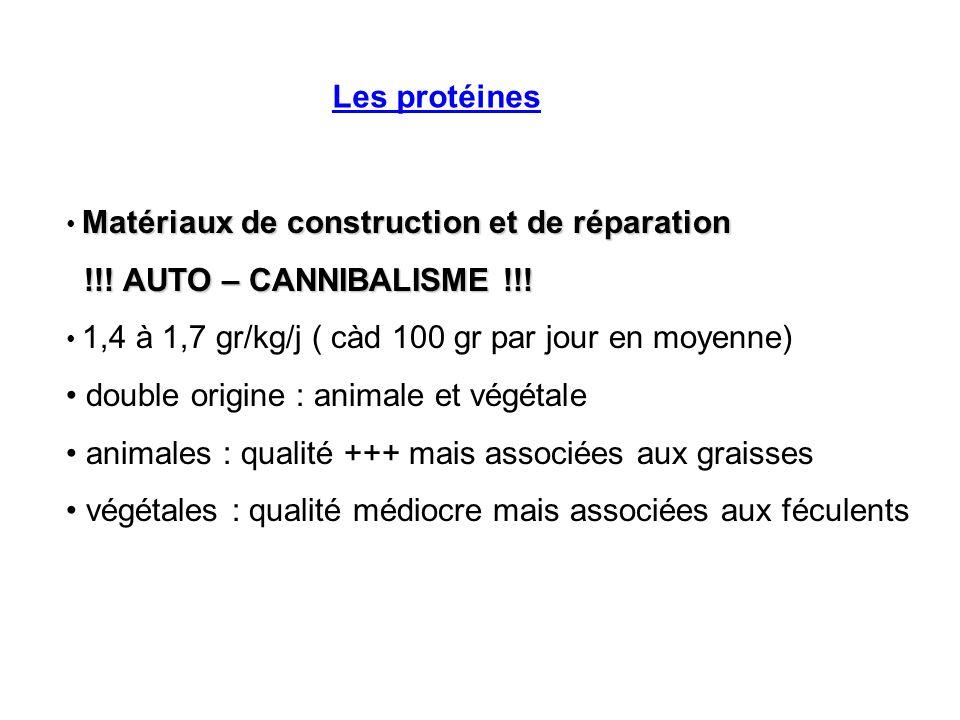 Les protéines Matériaux de construction et de réparation !!! AUTO – CANNIBALISME !!! !!! AUTO – CANNIBALISME !!! 1,4 à 1,7 gr/kg/j ( càd 100 gr par jo