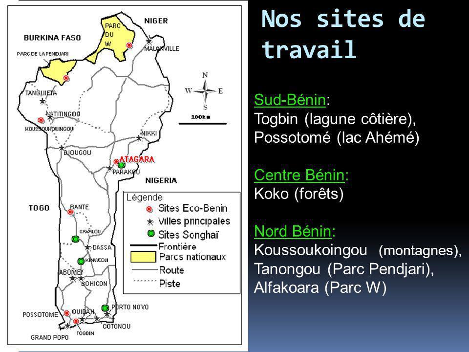 Nos sites de travail Sud-Bénin: Togbin (lagune côtière), Possotomé (lac Ahémé) Centre Bénin: Koko (forêts) Nord Bénin: Koussoukoingou (montagnes), Tan