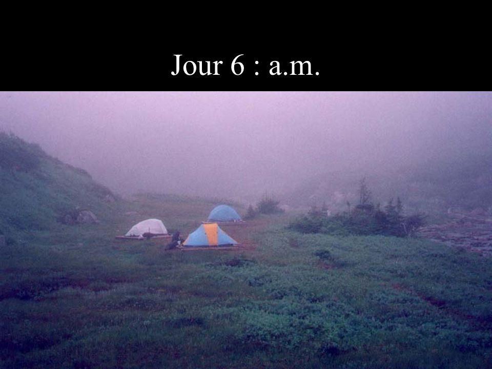 Jour 6 : a.m.