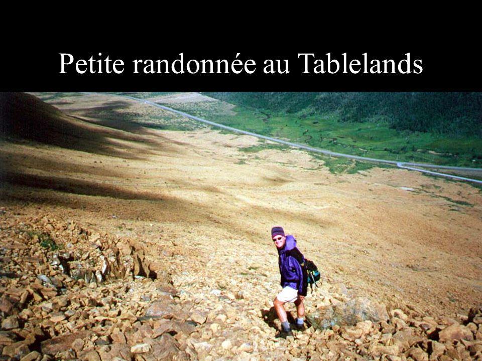 Petite randonnée au Tablelands