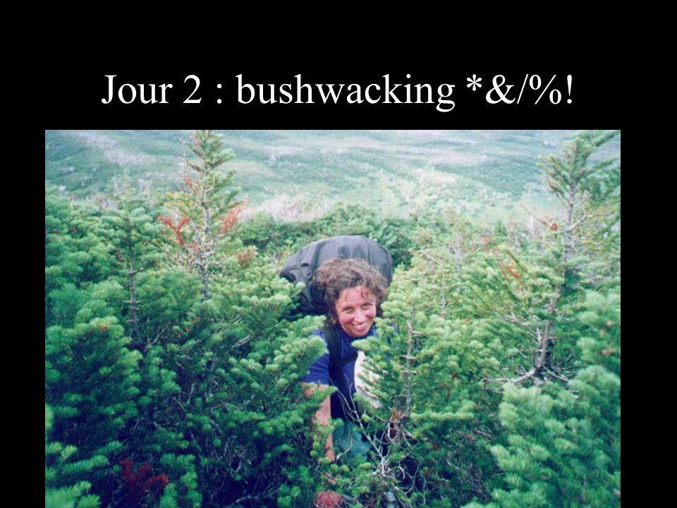 Jour 2 : bushwacking *&/%!
