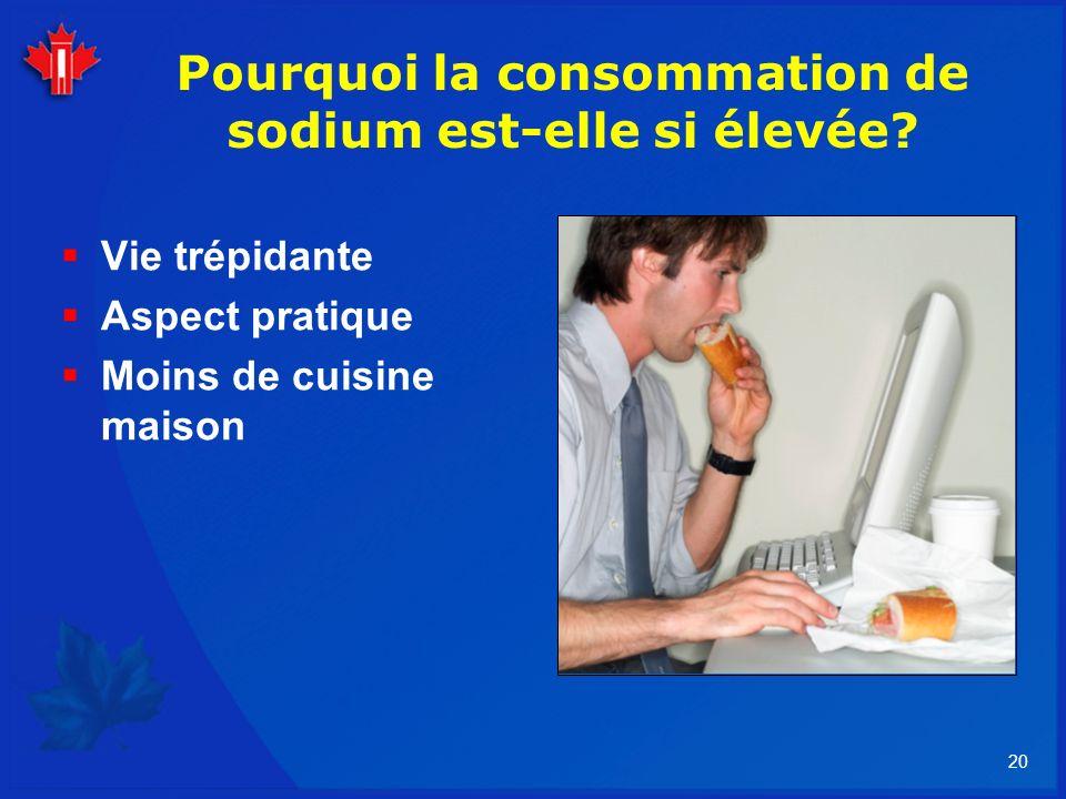 20 Pourquoi la consommation de sodium est-elle si élevée? Vie trépidante Aspect pratique Moins de cuisine maison