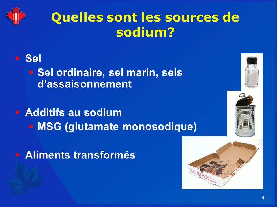 4 Quelles sont les sources de sodium? Sel Sel ordinaire, sel marin, sels dassaisonnement Additifs au sodium MSG (glutamate monosodique) Aliments trans