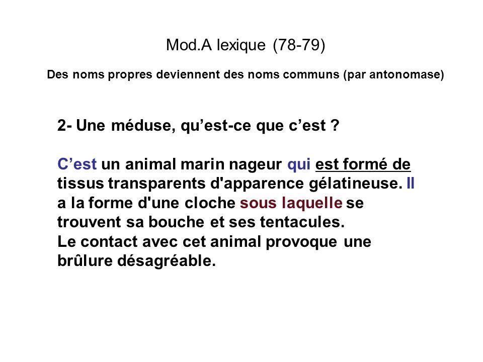 Mod.A lexique (78-79) Des noms propres deviennent des noms communs (par antonomase) 2- Une méduse, quest-ce que cest ? Cest un animal marin nageur qui