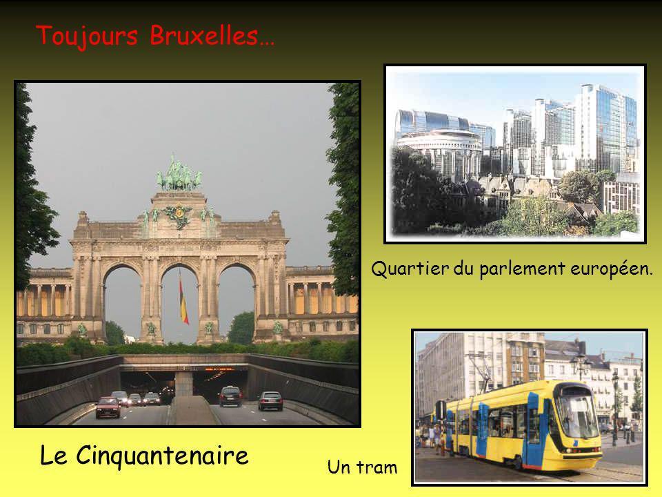 Encore Bruxelles… Cathédrale Saints Michel et Gudule.