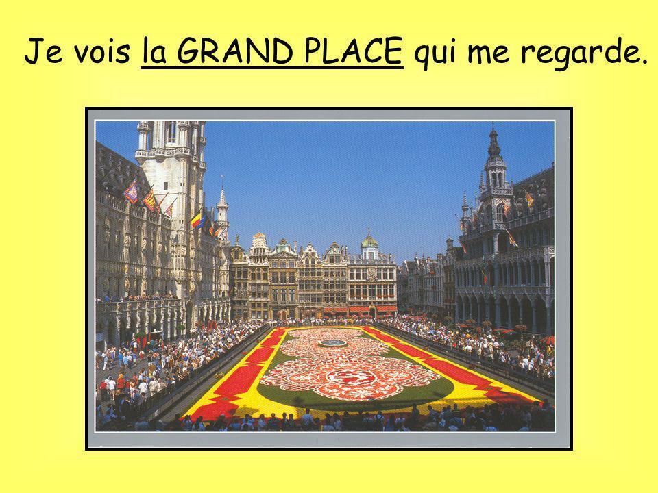 Bruxelles, Bruxelles! Quest-ce que tu vois?