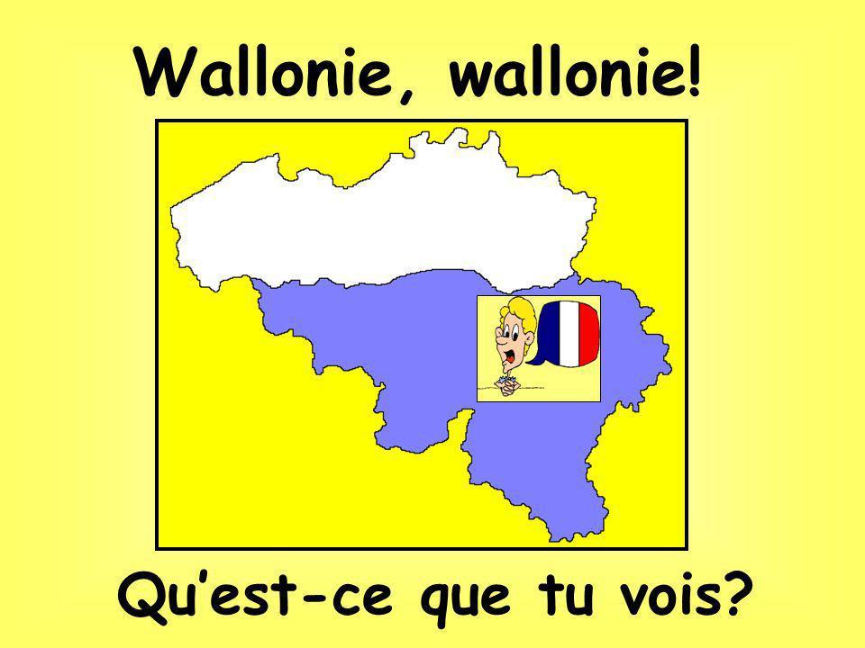 Waterloo… où Napoléon a perdu la bataille !!!