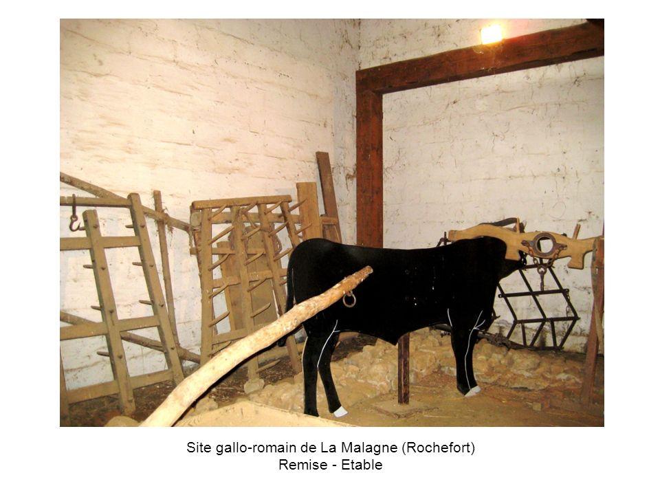 Site gallo-romain de La Malagne (Rochefort) Remise - Etable